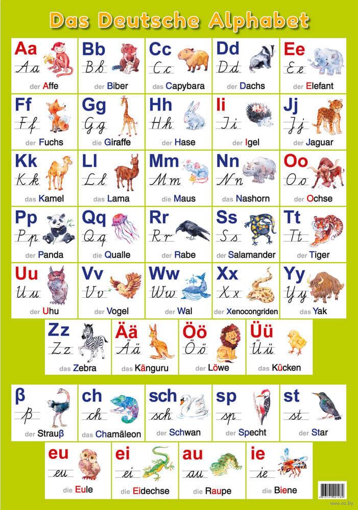Немецкий алфавит для детей в иллюстрациях