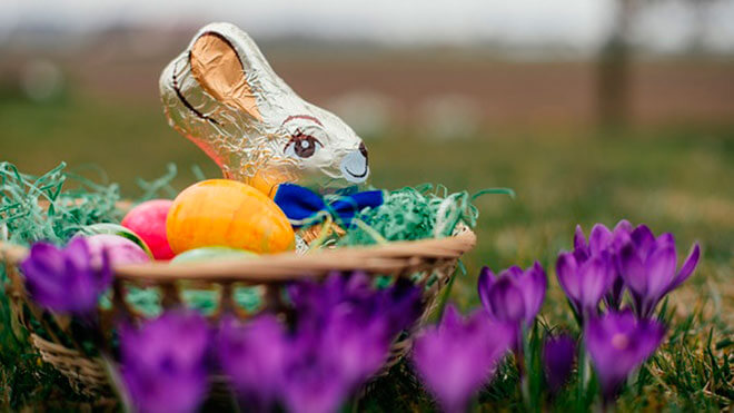 Что прячет Пасхальный заяц?